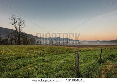Morning Fog In The Valley Pasture
