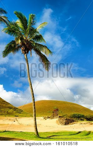 Palm tree towering over Moai at Anakena Beach on Easter Island in Chile
