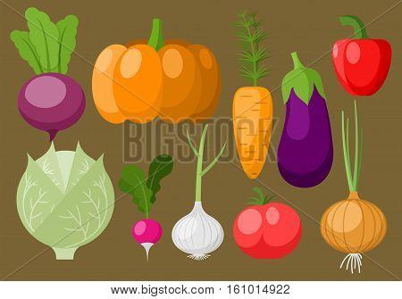 Different varieties of vegetables: tomato, radish, paprika, pumpkin, cabbage, aubergine, onion, garlic, carrot, eggplant