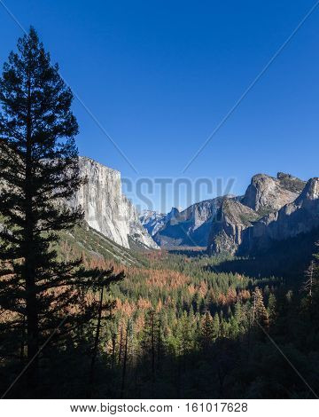 Yosemite Valley With El Capitan And Half Dome