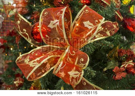 Red ribbon bow on green fir tree branch. Christmas tree ornament close photo with text place. Christmas or New Year fir tree decor closeup. Christmas decoration card background or banner template