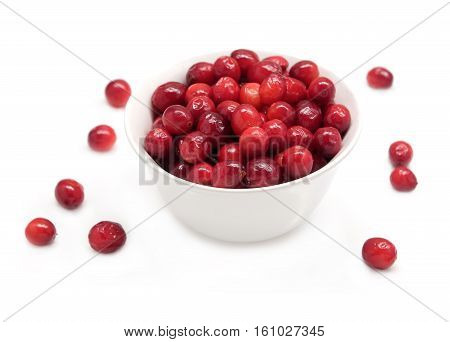 mooseberry, cranberry, cranberries, berry, berries, fruit, fruits, food, isolated, white, studio shot, indoor, vitamin, scattered, healthy, organic, tasty, dessert, appetizing, juicy, ripe, red, acidic, bowl, dish, dishware, crockery, color, details, wick