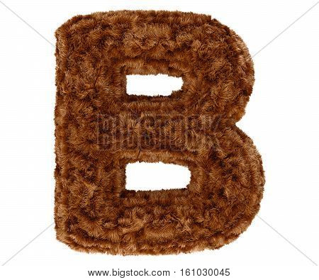 Wild animal brown bushy bear decorative fur alphabet capital letter B. 3d rendering illustration. Isolated on white background