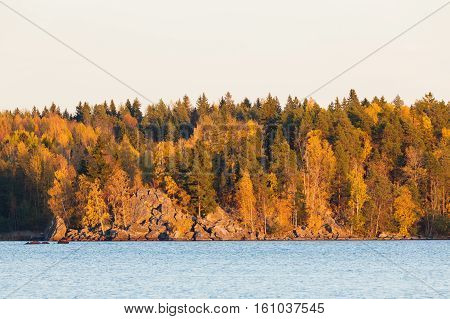 Autumnal forest lakeside sunset light in Finland