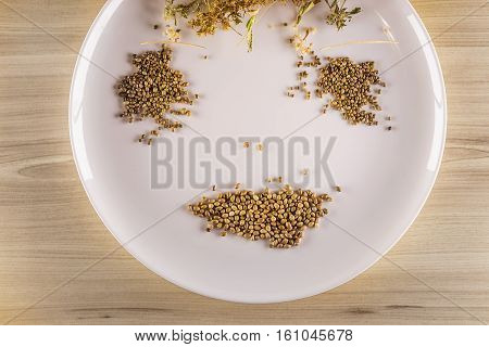 White plate dried leaves of hemp and hemp seeds in yellowish wood background to form a smiling face allusion