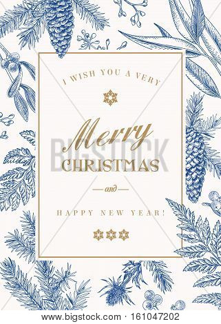 Christmas greeting card in vintage style. Vector frame with ferns berries mistletoe pine cones and spruce branches seeds of eucalyptus. Blue.
