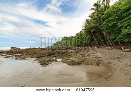 Rocky beach and trees montezuma Costa Rica