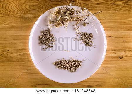 White Plate, Dried Leaves Of Hemp And Hemp Seeds In Yellowish Wood Background