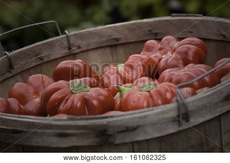 Close up of a wood basket full of red peppers at the outdoor/indoor Jean-Talon Market in Montreal, Quebec, on a bright day in September.