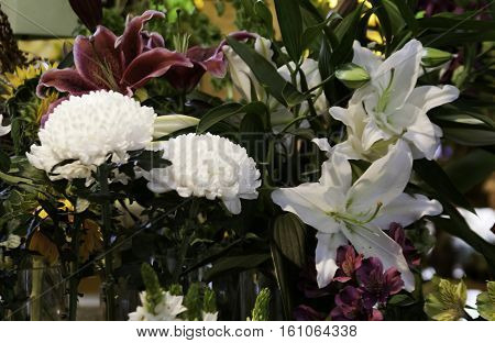 Variety of white and burgundy purple flowers at the outdoor/indoor Jean-Talon Market in Montreal, Quebec, on a bright day in September.