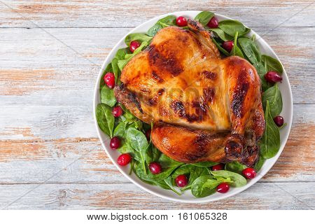Olden Crispy Skin Chicken Grilled With Arugula, Spinach And Cranberry Salad