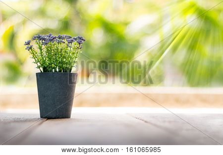 Violet flower on wooden table and natural background