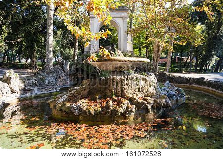 Fountain With Fallen Leaves In Rome City