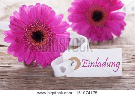 Label With German Text Einladung Means Invitation. Pink Spring Gerbera Blossom. Vintage, Rutic Or Aged Wooden Background. Card For Spring Greetings.