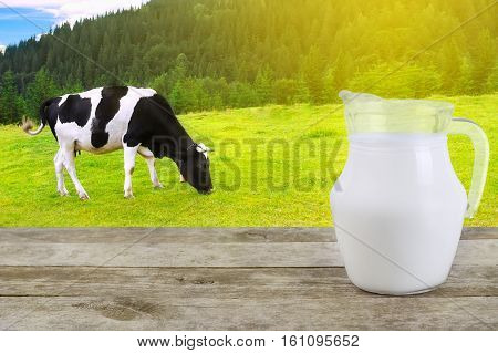 Milk in glass jug on old wooden table with grazing cow on the meadow with sunshine in background. Milk with cow on the background
