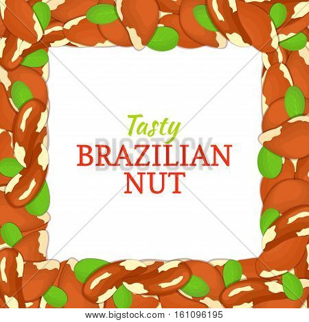Square frame composed of delicious brazilnut nut. Vector card illustration. Nuts frame, brazilian nut fruit in the shell, whole, shelled, leaves appetizing looking for packaging design of healthy food