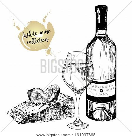 Vector set of white wine in engraved vintage style. Wine bottle glass plum and cheese slice. Isolated on white background. Decorated with lettering. for restaurant cafe store food menu design.