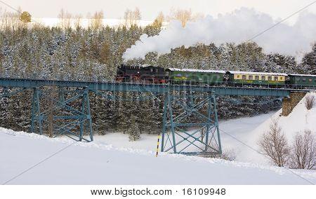 steam train, Oberwiesenthal - Cranzhal (Fichtelbergbahn), Germany