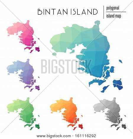 Set Of Vector Polygonal Bintan Island Maps Filled With Bright Gradient Of Low Poly Art. Multicolored