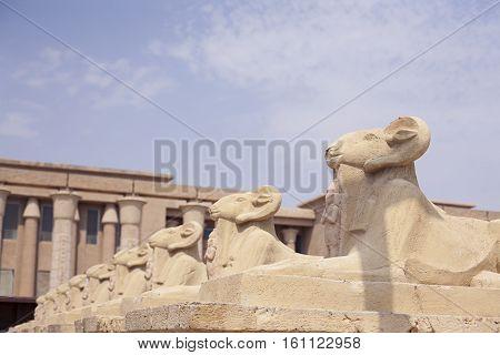 Avenue of the ram-headed Sphinxes. Karnak Temple. Luxor, Egypt