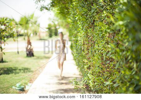 Green bush park road silhouette of woman, green alley in Sharm el Sheikh, Egypt