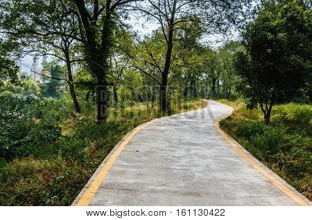 The country road scenery in spring season.