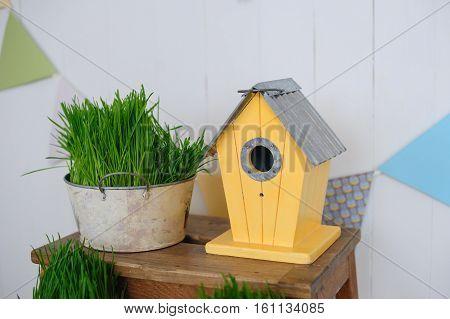 decorative birdhouse and green grass in studio