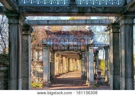 TSARSKOYE SELO, SAINT - PETERSBURG, RUSSIA - OCTOBER 19, 2016: Italian style pergola in the Private Garden of The Catherine Park. The Tsarskoye Selo is The State Museum Preserve.