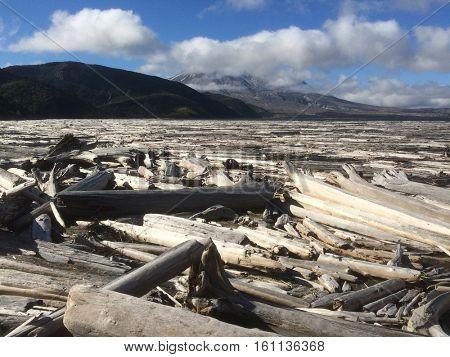 Spirit Lake  Mount Saint Helens National Volcanic Monmument