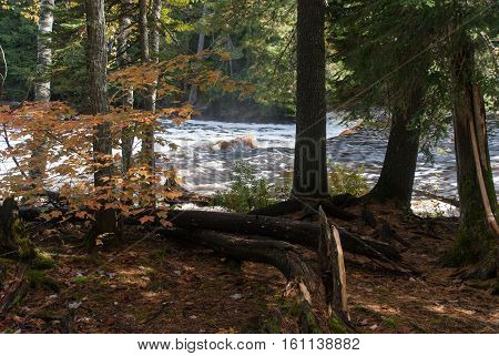 View on the Lower Falls from Tahquamenon Falls State Park path, Chippewa County, Michigan, USA
