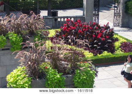 Flower gardens at Niagra Falls on the