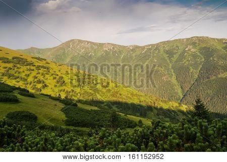 Greenery In Slovakia