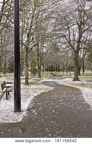 Path in a public park seasonal changes with icy landscape.