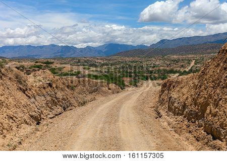 Desert Road: A rough dirt road leads into the Chaco in Bolivia