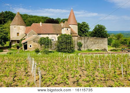 Chateau de Nobles, Burgundy, France