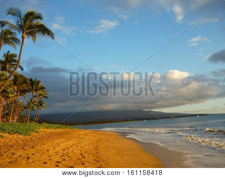 ocean beach view with clouds mountain and palm trees