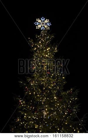 Beautiful Christmas tree at night. Winter holiday