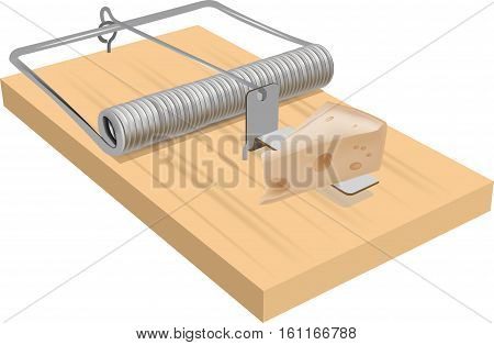 Mouse trap baited with a large piece of cheddar cheese