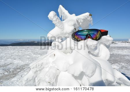 Goggles forgotten on fir covered by snow close up view Mt. Kopaonik Serbia