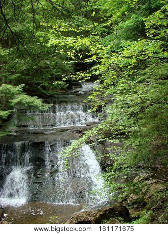 A rushing creek and several waterfalls in a forest in Pennsylvania