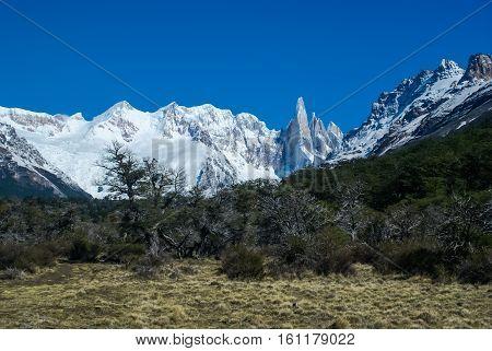 Wild Nature In Argentina