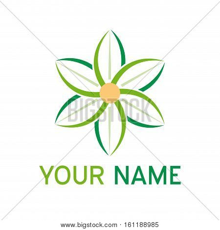 Vector sign abstract green edelweiss, isolated illustration
