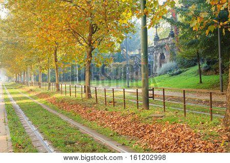 Tram Tracks In Perspective. Autumn Season