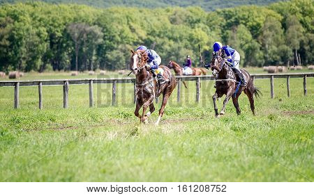 two jockey on a racehorse fight for victory on competition on Finish