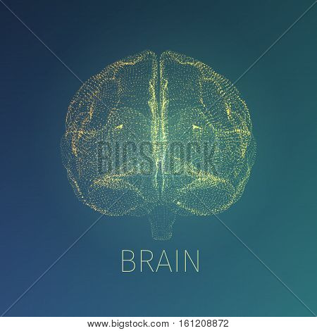Abstract brain vector illustration. Xray view inside head. Neurology banner fow web
