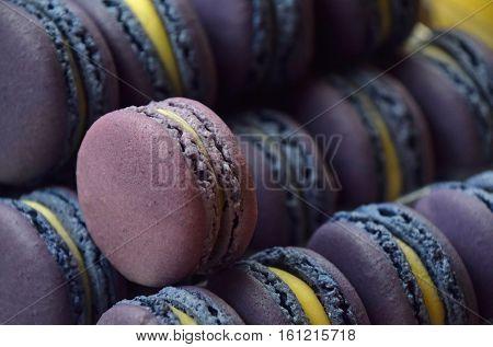 Fresh Baked Purple Macaroon Cookies Close Up