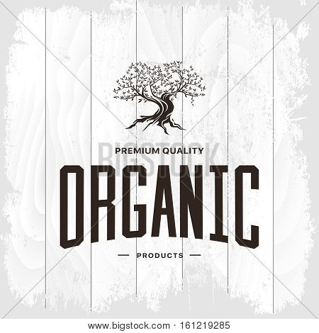 Olive tree vintage logo concept isolated on white wooden background. Web infographic organic product retro pictogram. Premium quality grunge threadbare wood texture illustration mockup.