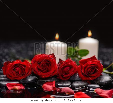 Still life with red rose with two candle ,petals and therapy stones