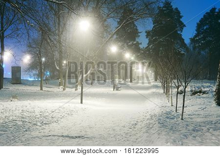 Snowy city park in light of lanterns at evening.Snow-covered trees and benches, footpath in a fabulous winter night park.Winter landscape