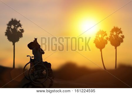 silhouette of disabled on wheelchair or background.day of the disabled person .Concept cripple .art Plant Dawn View Cloud Calm Card Bright Blue model sea love night alone sky sun white chair.